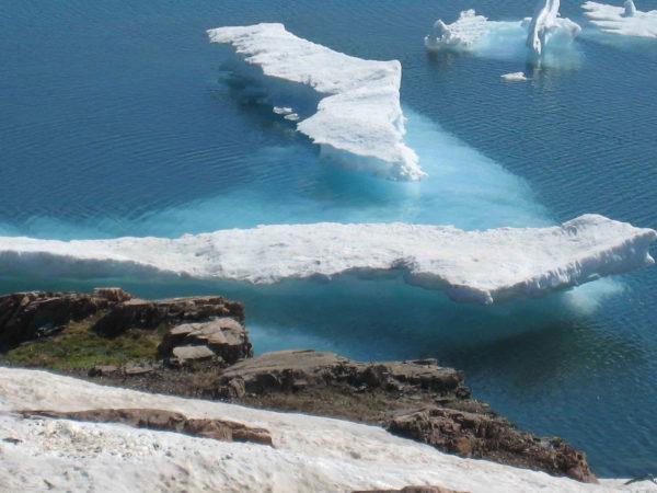 Long range boat charter to polar regions